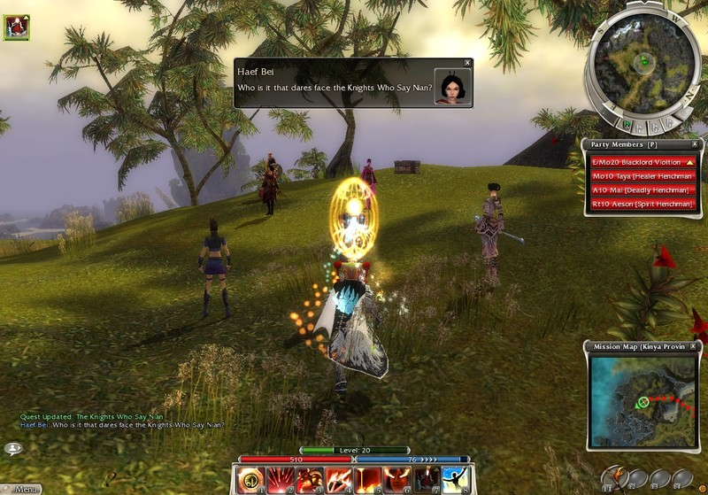 Guild Wars_the Holy Grail_Ni!