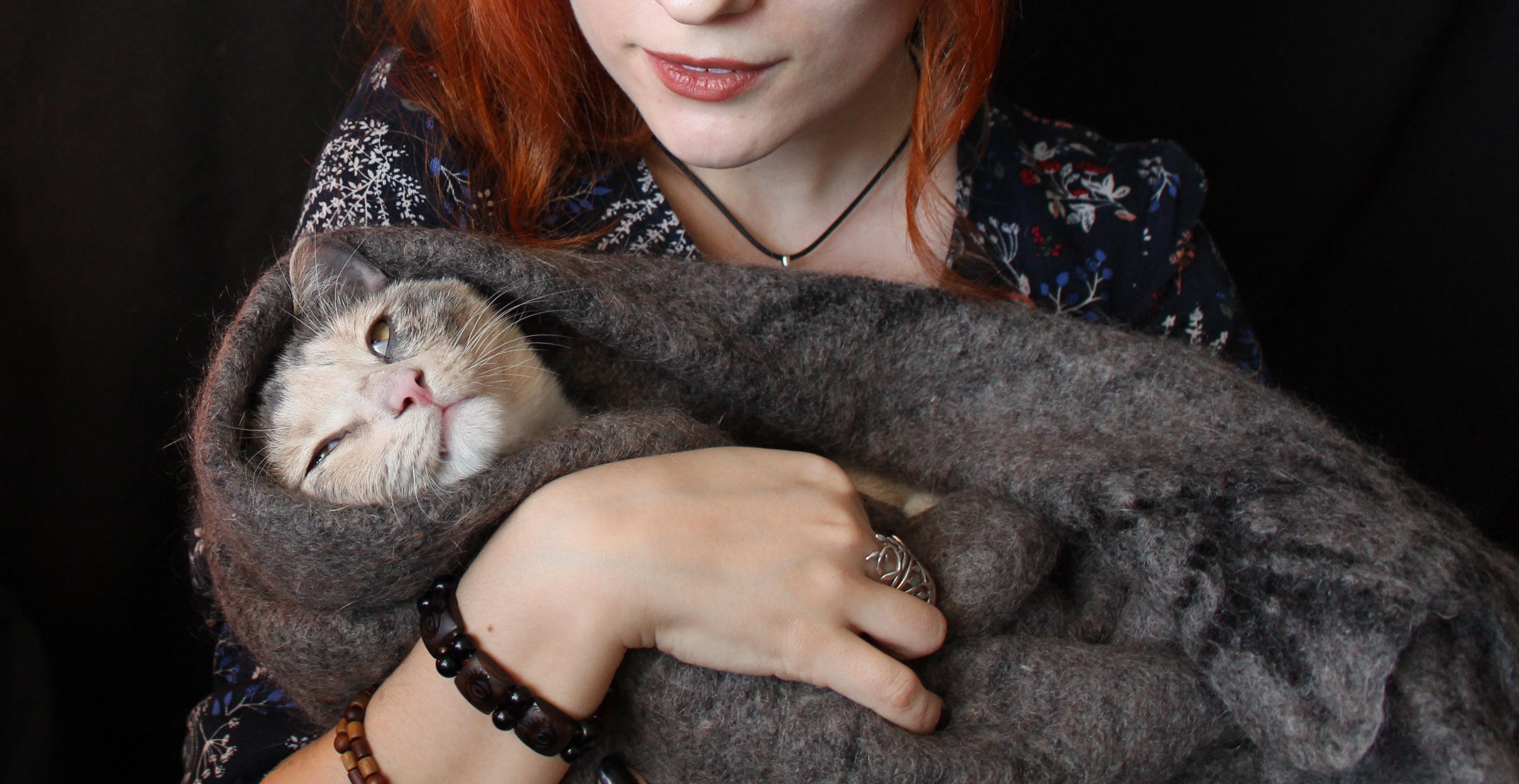 Plyushka the Cat